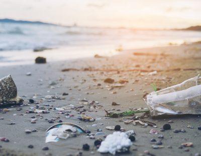 Delitos Medioambientales y sus Consecuencias Penales